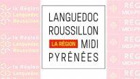 Logo provisoire de la nouvelle région Languedoc-Roussillon Midi-Pyrénées
