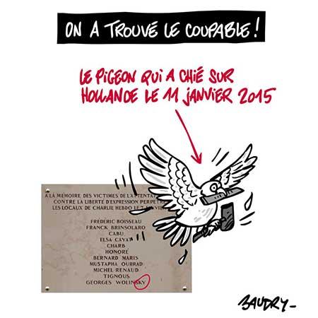 Le pigeon de Charlie coupable d'avoir chié sur le président Hollande.