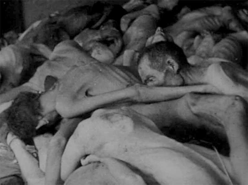 Extermination d'êtres humains via le Zyclon B