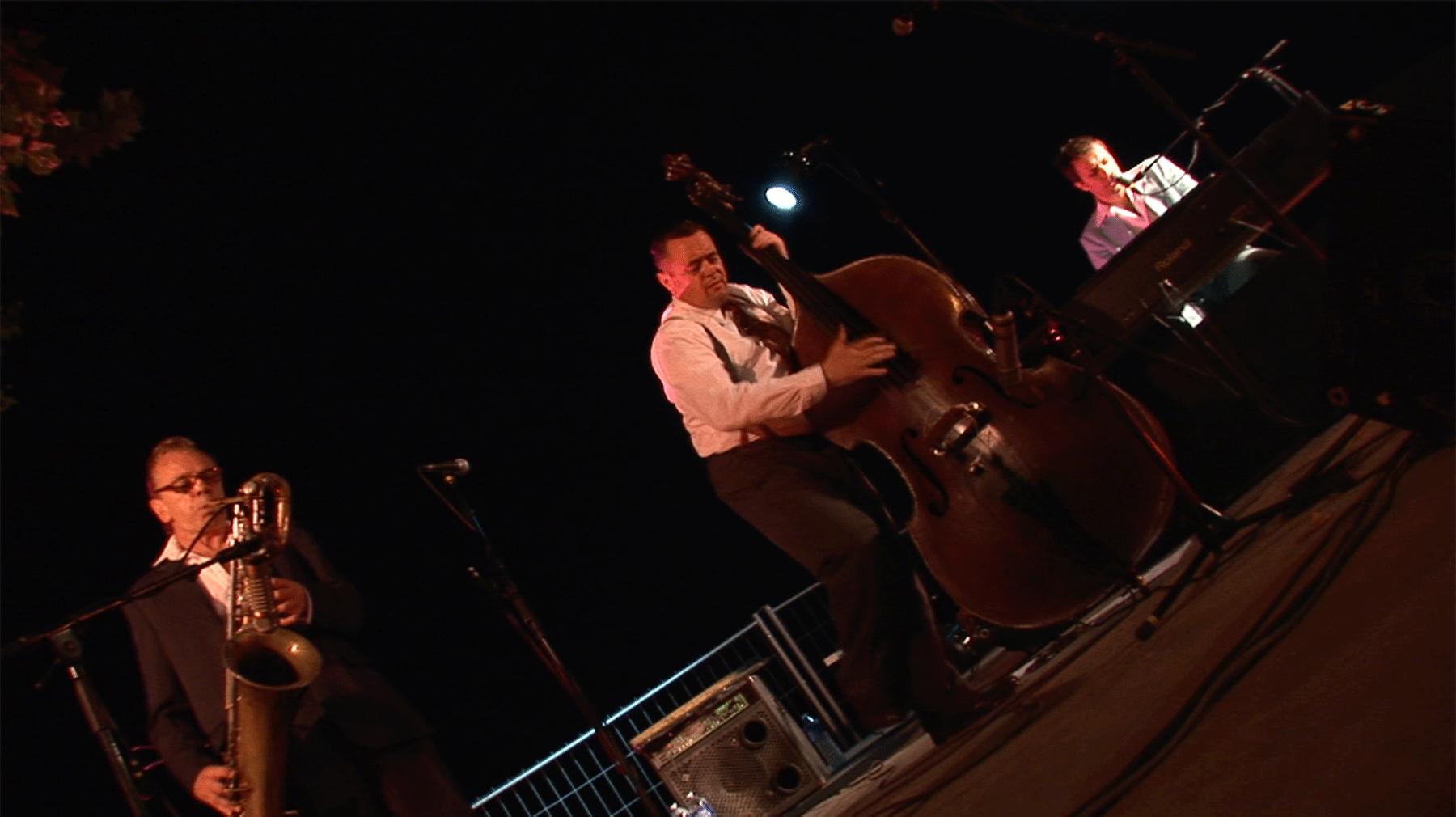 Matthieu Boré en concert à Sauve 1