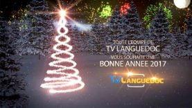 Toute l'équipe de Tv Languedoc vous souhaite les meilleurs voeux pour 2017