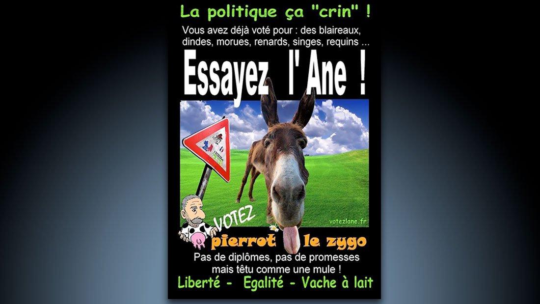 Election 2012, essayez l'âne