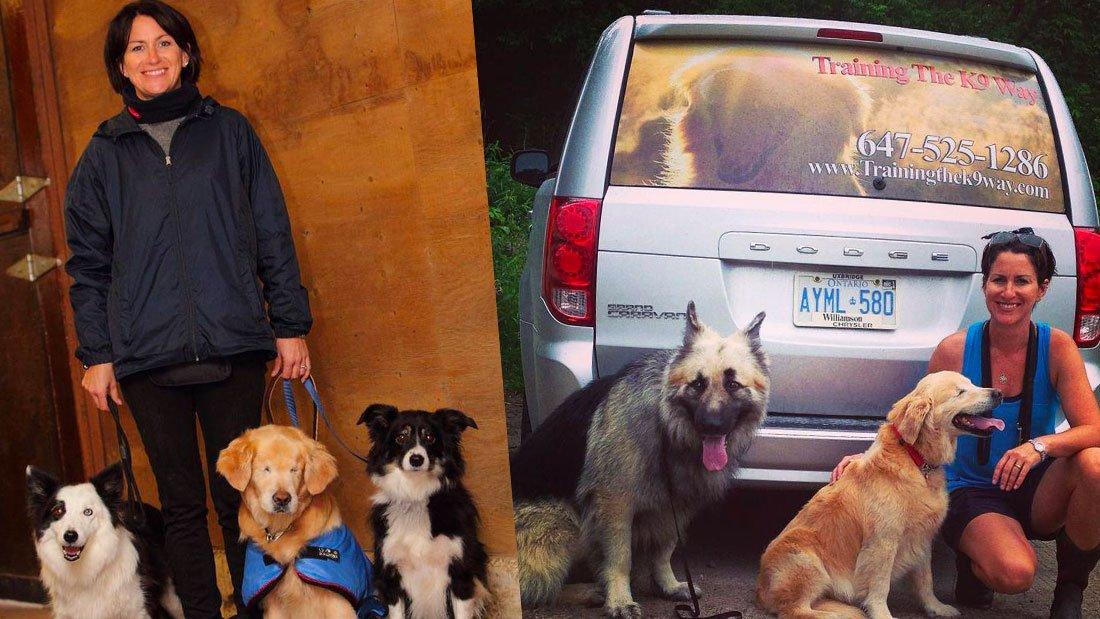 johanne-george-et-ses-chiens