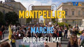 Grande Marche pour le climat à Montpellier