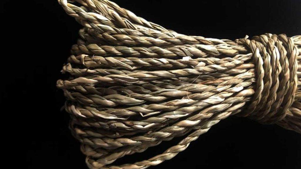 Ardèche : La plus ancienne corde au monde montre que l'homme de Néandertal était plus intelligent que nous ne le pensions 1